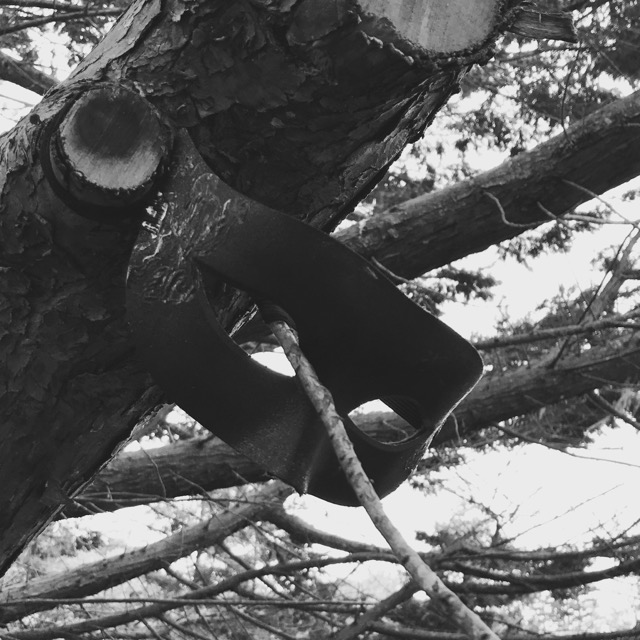 black and white photo of a Mardi Gras mask hung from a tree