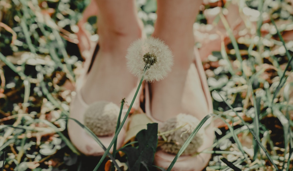 color photo of a woman's feet. She si wearing pink ballet flats and there is a white fluffy dandelion in the foreground.